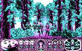 Crystals of Arborea DOS Your band in the forest. (CGA)