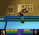 ECW Hardcore Revolution Game Boy Color Raven and RvD in training