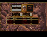 Heimdall Amiga Party selection