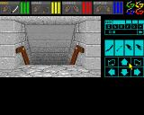 Dungeon Master Amiga Descending