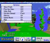 True Golf Classics: Wicked 18 SNES In-game options