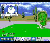 True Golf Classics: Wicked 18 SNES Teeing off.