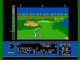 Jack Nicklaus' Greatest 18 Holes of Major Championship Golf NES Near the green