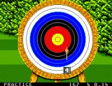 Olympic Gold: Barcelona '92 Game Gear ...release! Well, it's not a bull's-eye but at least I hit the target.