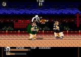 Mystical Fighter Genesis Jump kick