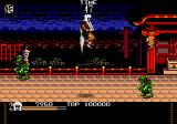 Mystical Fighter Genesis Jumping