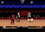 Mystical Fighter Genesis 2 player game
