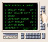 Super Caesars Palace SNES Odds on the horses