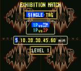 Hammerlock Wrestling SNES Exhibition match options