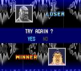 Hammerlock Wrestling SNES Try again