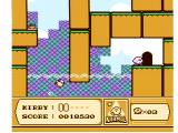 Kirby's Adventure NES A door to a new part of the level