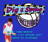 Dig & Spike Volleyball SNES Title screen