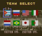 Dig & Spike Volleyball SNES Team select