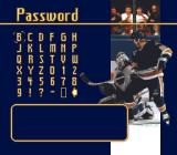 Brett Hull Hockey SNES Password screen