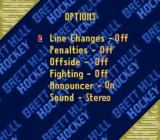 Brett Hull Hockey SNES Options