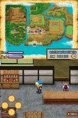 Harvest Moon DS: Island of Happiness Nintendo DS Inside the new arrivals' shop.