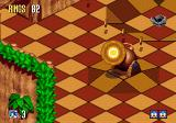 Sonic 3D Blast Genesis that, in the cannon, is Sonic..