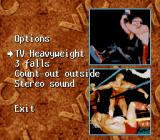 WCW SuperBrawl Wrestling SNES Options