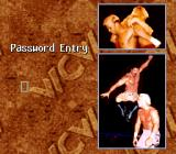 WCW SuperBrawl Wrestling SNES Password screen