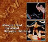 WCW SuperBrawl Wrestling SNES Game modes
