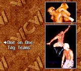 WCW SuperBrawl Wrestling SNES Choose between a one on one or tag team match
