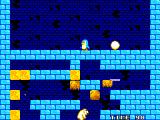 Penguin Land SEGA Master System In Game