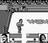 WCW Wrestling: The Main Event Game Boy Incoming stork