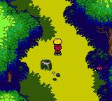 Magi Nation Game Boy Color Traversing a yellow forest.