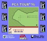 PGA Tour 96 Game Boy Landing on the thre green, with all its subtle defects.