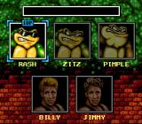 Battletoads & Double Dragon: The Ultimate Team Genesis Choosing your character