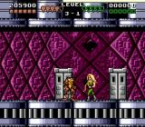 Battletoads & Double Dragon: The Ultimate Team Genesis Girls as enemies