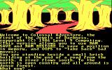 Jewels of Darkness DOS Starting screen for Colossal Adventure (CGA 4-color)