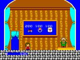 Alex Kidd in Miracle World SEGA Master System The shop