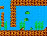 Alex Kidd in Miracle World SEGA Master System The hidden underground section of Lake Fathom