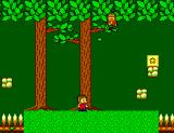 Alex Kidd in Miracle World SEGA Master System Alex in the Blakwoods
