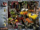 Youda Legend: The Curse of the Amsterdam Diamond Windows Flower price puzzle