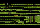 Floyd of the Jungle Atari 8-bit In the beginning of level 2 as 1 player