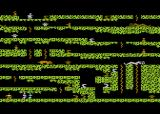 Floyd of the Jungle (Version II) Atari 8-bit Start of level 2