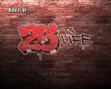25 to Life Windows Title Screen