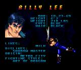 Double Dragon V: The Shadow Falls Genesis Should I choose this character?..
