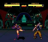 Double Dragon V: The Shadow Falls Genesis Battle in sewers