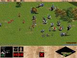 Age of Empires Windows There come reinforcements...