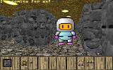 3D Bomber DOS Your fellow enemy bomberman