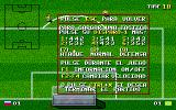 USA Soccer '94 DOS Information on the actions during the match