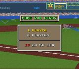 The Sporting News Baseball SNES Home run derby options