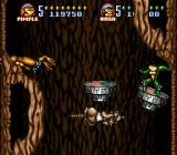 Battletoads in Battlemaniacs SNES Dodging the rat cannons