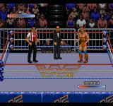 WWF Rage in the Cage SEGA CD IRS vs Tatanka