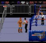 WWF Rage in the Cage SEGA CD Fighting outside the ring