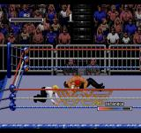 WWF Rage in the Cage SEGA CD I'm down