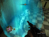 Wolfenstein Windows One of the pesky Nazi experiments is surrounded by a force-field.